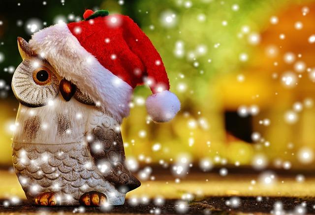 vánoční sova.jpg