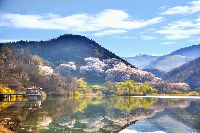 krajina korejské republiky